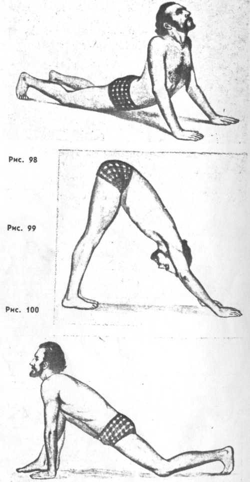 А венцеслав евтимов йога практическо е руковод ство медицина и физкултура софия 1981 ббк 53