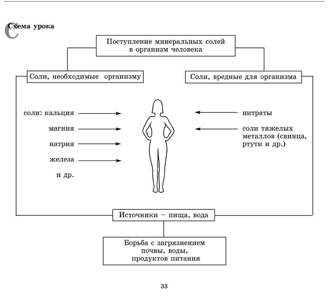 Схема человек живой организм 4 класс схема