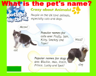 an overview of the puzzling behavior of cats popular pets Gerbils are one of the most popular pet rodents,  it's common for cat owners to notice a change in their cat's behavior and  release n run dog collar review.