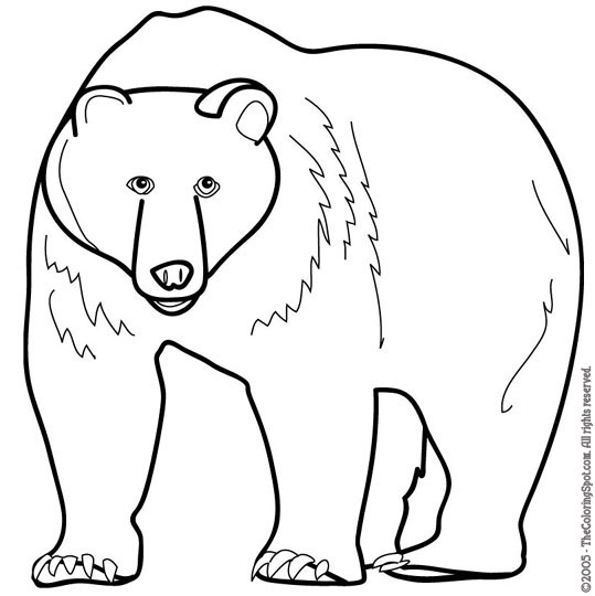 Grizzly bear coloring book page - a-k-b.info